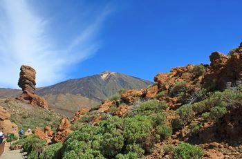 Půjčovna Tenerife
